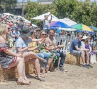 LA-Vegan-Beer-Fest8